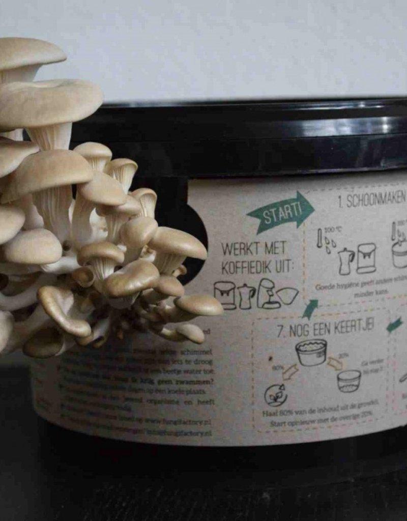 FungiFactory Growkit oesterzwam