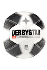 DERBYSTAR Derbystar Magic Pro Trainingsball TT