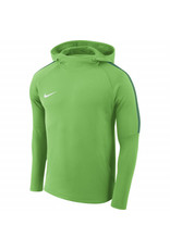 NIKE Kinder-Hoody ACADEMY 18 (green spark/pine green)