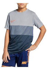NIKE Dri-FIT Academy Tee T-Shirt Kids Grau F012
