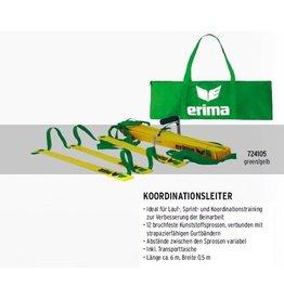 Erima Koordinationsleiter green/gelb