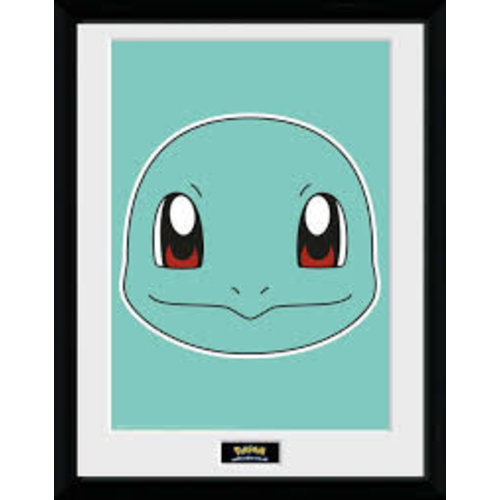 Pokemon Squirtle Face Framed Print 30x40