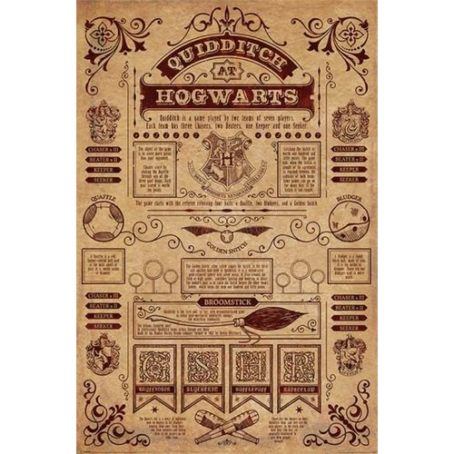 Harry Potter Quidditch At Hogwarts Maxi Poster 61x91.5