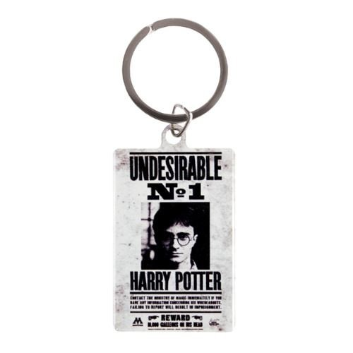 Harry Potter Undesirable Metal Keychain