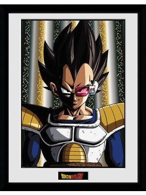 Dragon Ball Z Vegeta Framed Collector Print 30x40