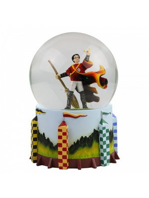 Harry Potter Quidditch Waterball Wizarding World