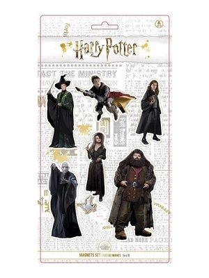 Harry Potter Set of 6 Magnets (Set B)