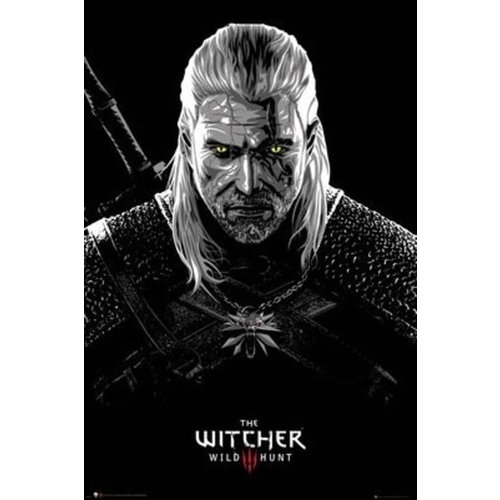 The Witcher Toxicity Maxi Poster 61x91.5