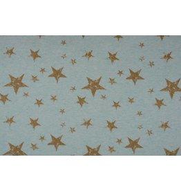Sweatstoff Kleiner und großer Stern Glitzer Altgrün