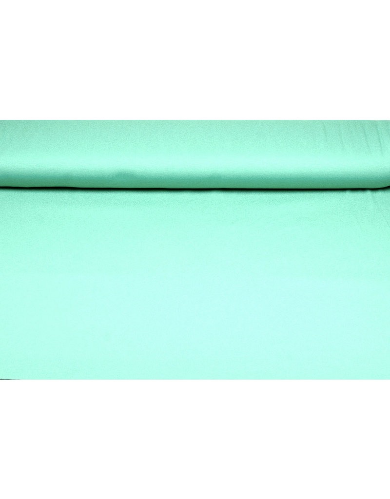 Viscose Jersey Mint Green