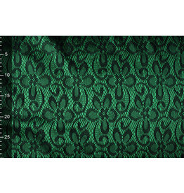 Lace on Charmeuse Green
