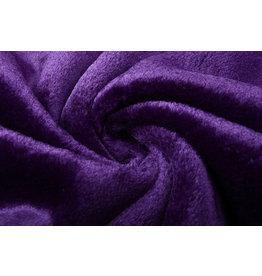 Short-haired Teddy Purple