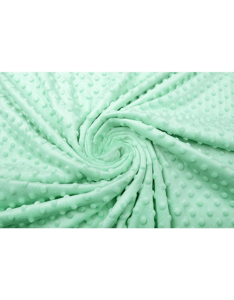 Minky Fleece Mint Groen