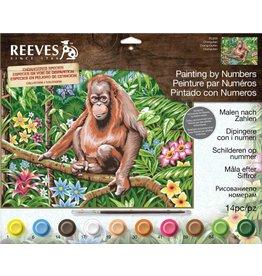 Schilderen op nummer Orangutan