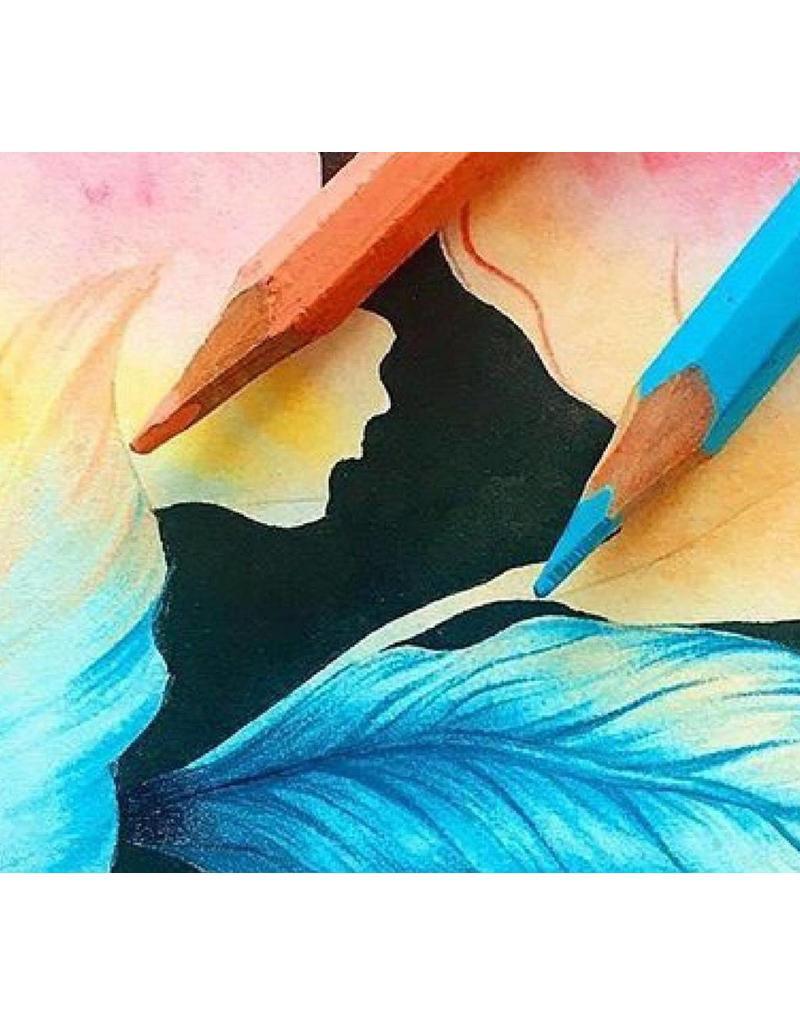 Zaterdag 3/11 van 14u tot 16u30 basistechnieken van het kleurpotlood