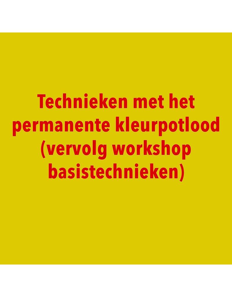 Technieken met het permanent kleurpotlood - Dinsdag 12/11 van 19.30u tot 21.30u