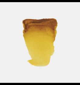 Rembrandt Gummigut