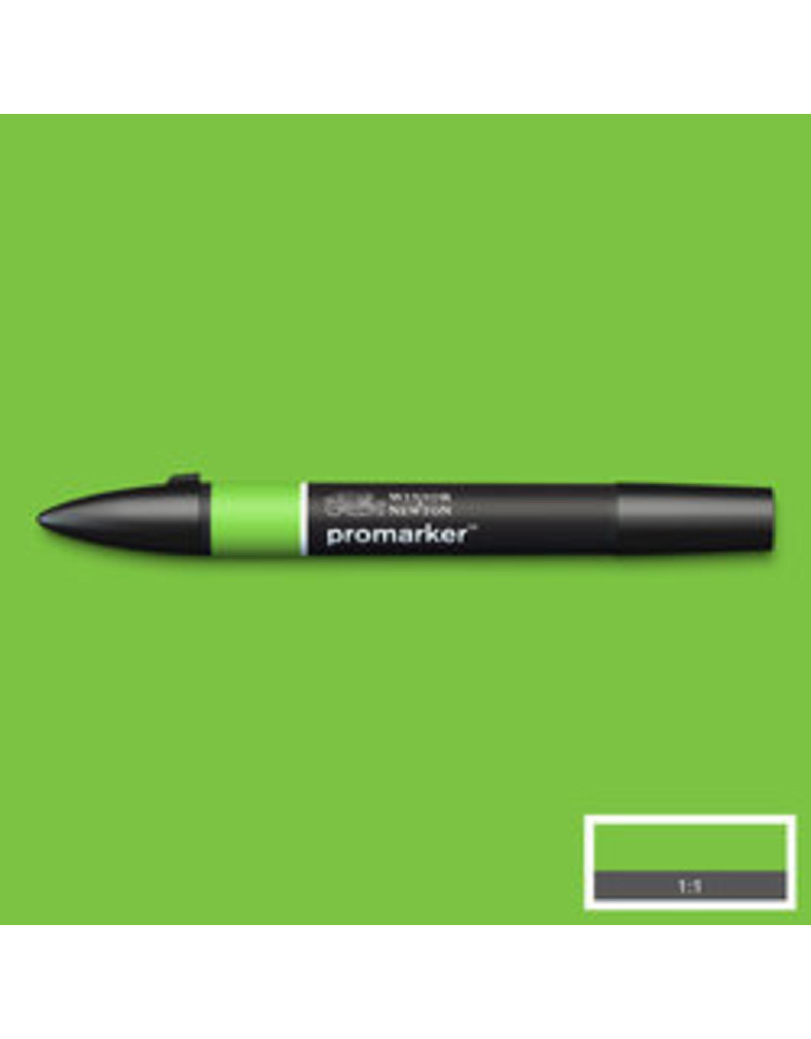 Bright green - promarker