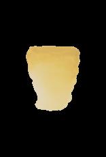 Rembrandt Napels geel donker 10ml