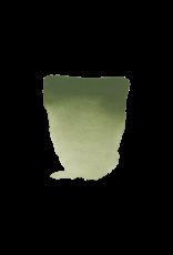 Rembrandt Chroom oxyde groen 10ml
