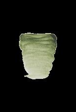 Rembrandt Groene aarde 10ml