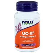 NOW Foods UC-II Collagen typ 2