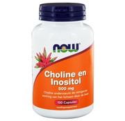 NOW Foods Choline en Inositol 500 mg