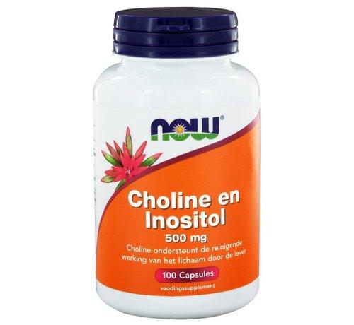 NOW Foods Choline en Inositol 500 mg 100 caps