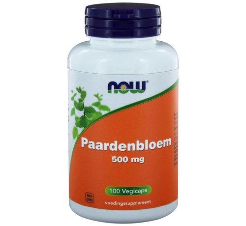 NOW Foods Paardenbloem 500 mg 100 caps