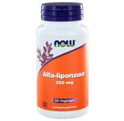 NOW Foods Alfaliponzuur 250 mg