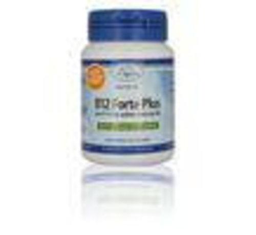 Vitakruid B12 forte plus 60tab