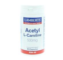 Acetyl l-carnitine 60cap