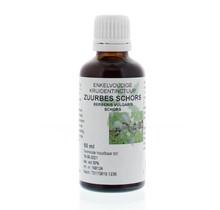 Berberis vulgaris / zuurbes wortel tinctuur 50ml