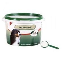 Gelatinaat hond 2kg