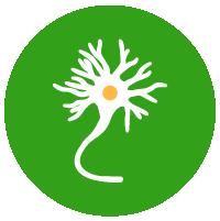 Neurotransmitters hack