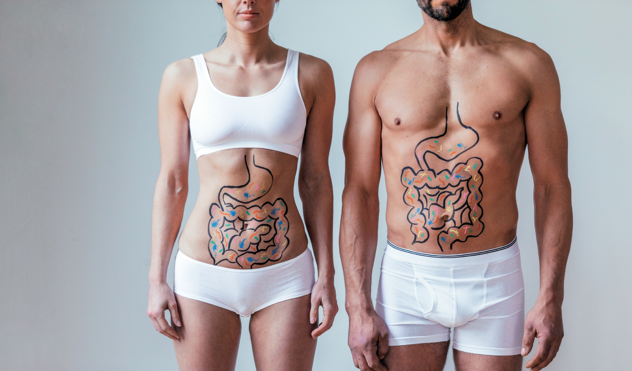 De darm heeft grote invloed op jouw immuunsysteem.