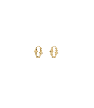 Anna + Nina Anna+Nina 19-1M902021GP Eden Ring Earring Goldplated Silver