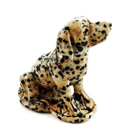 Dalmatian Dog Dalmatine Jaspis