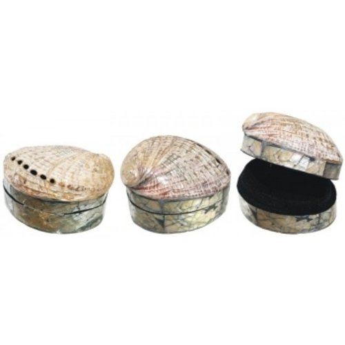 Doosje met Abalone schelp