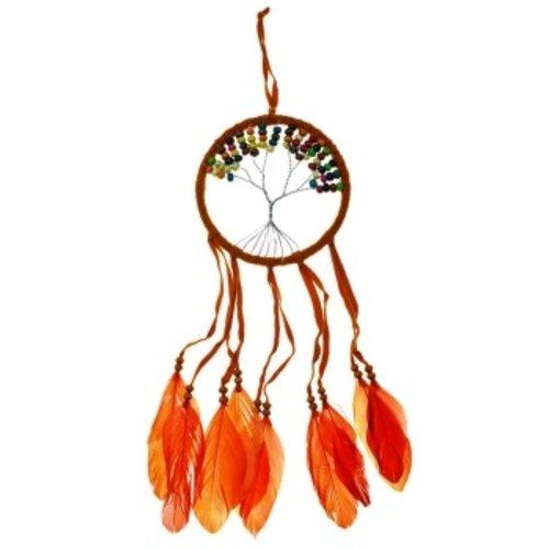 Dromenvanger levensboom oranje 12 cm