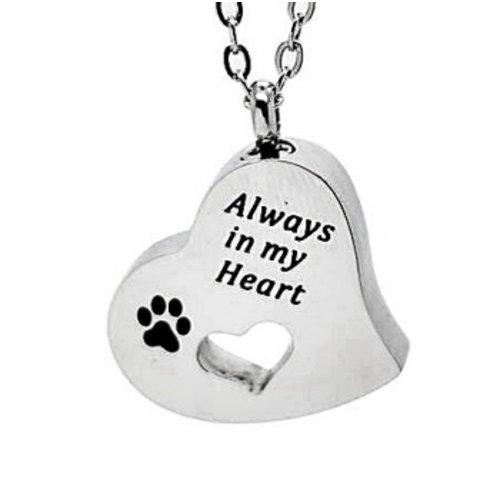 Ashanger always in my heart
