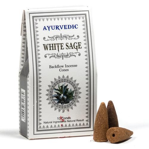 Ayurvedische Witte Salie backflow wierookkegels