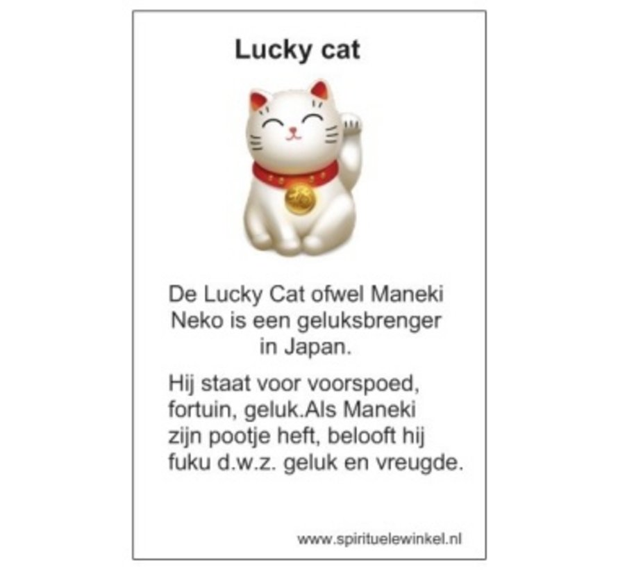 Lucky Cat porseleinen gelukshanger met kaartje
