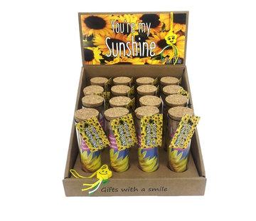 Zonnebloem cadeau you're my sunshine