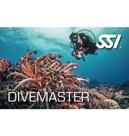 Upgrade van SSI Diveguide to SSI Divemaster