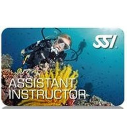 SSI Assistent Instructeur