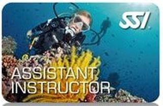 Ssi Assistant Instructor Vipdiveschool Com