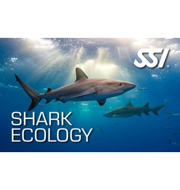 Shark Ecology SSI specialty instructor