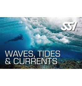 Waves, Tides & Currents SSI specialty instructor