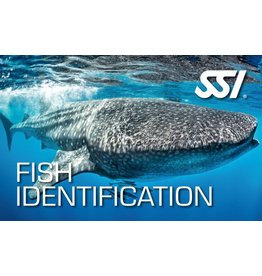 Fish identification SSI specialty instructor